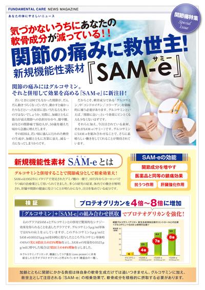 NIMグルコサミン情報誌01
