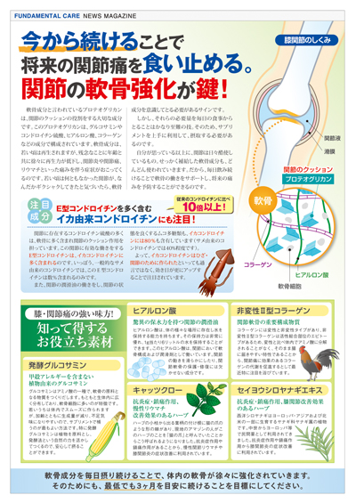 NIMグルコサミン情報誌02