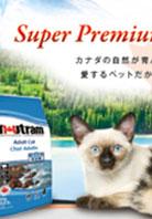 ペットフードメーカー キャンペーン 雑紙広告 デザイン制作